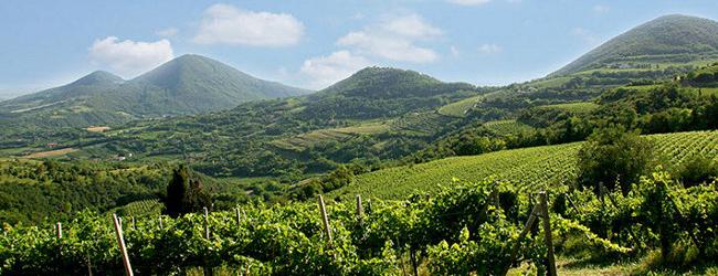 Monselice – Bastia  3 (Colli Euganei)