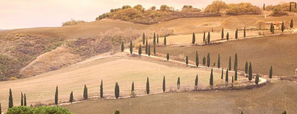 Siena – San Quirico D'Orcia 3 (Le Crete Senesi)