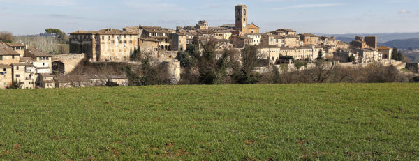 Siena – Boccheggiano 2