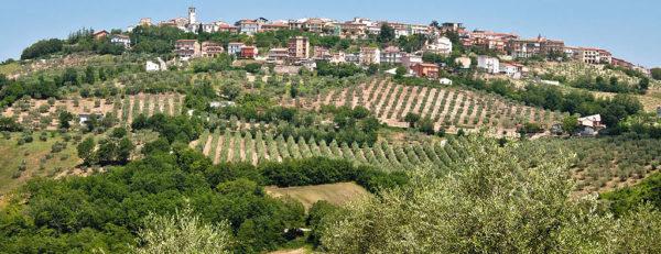 Castelfranci – Tretorri 2
