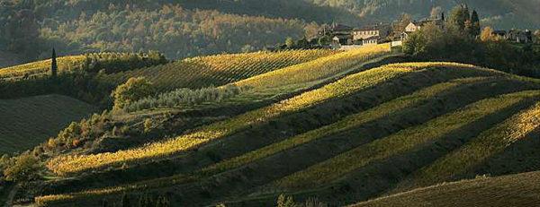 Siena – Castellina in Chianti