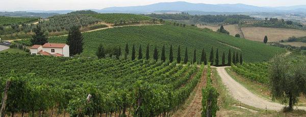 Poggibonsi – Castellina in Chianti 2
