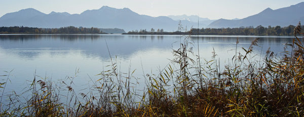 Sebi – Bernau Am Chiemsee