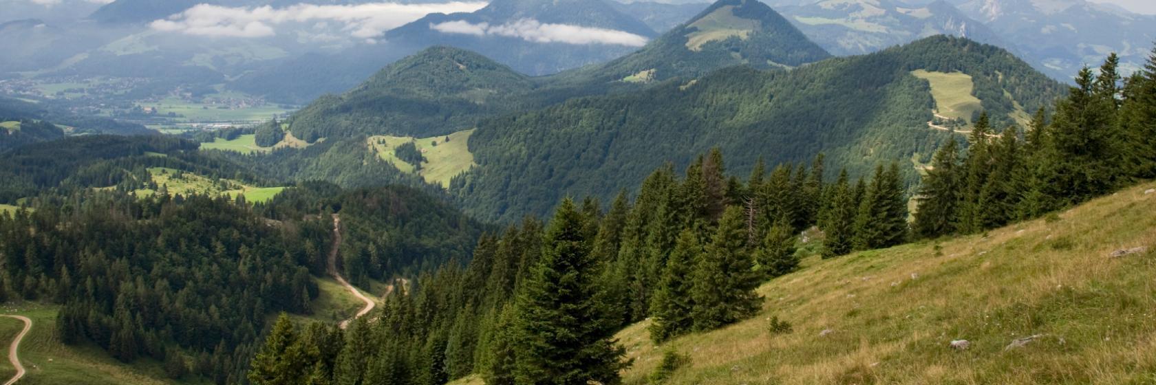 Miesbach-Oberaudorf